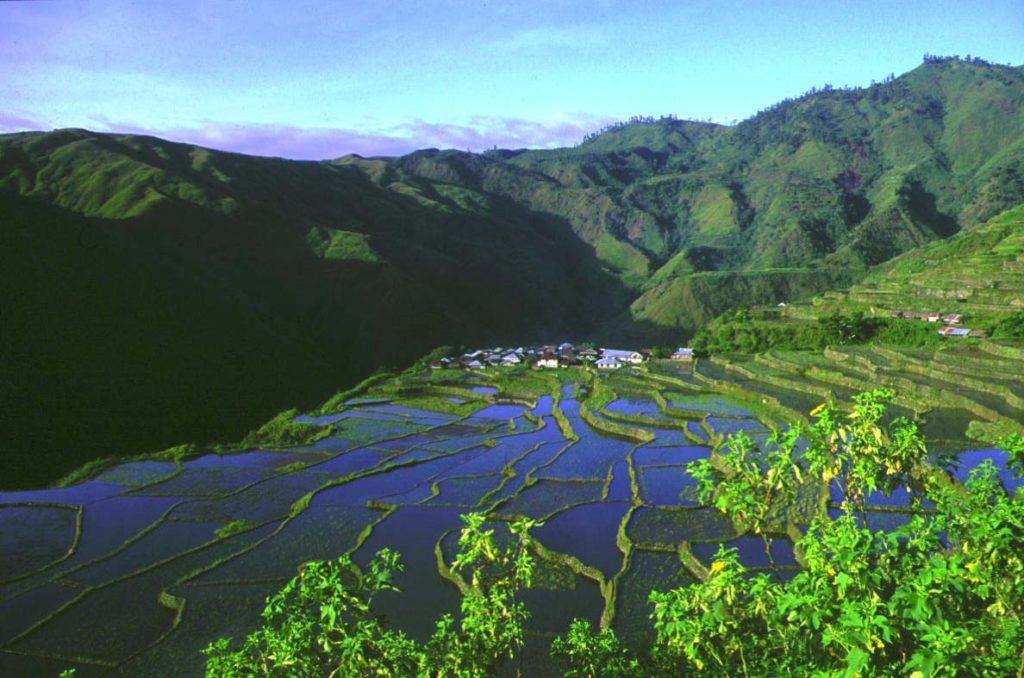 フィールドワークのために滞在していたフィリピンの山岳民族の集落